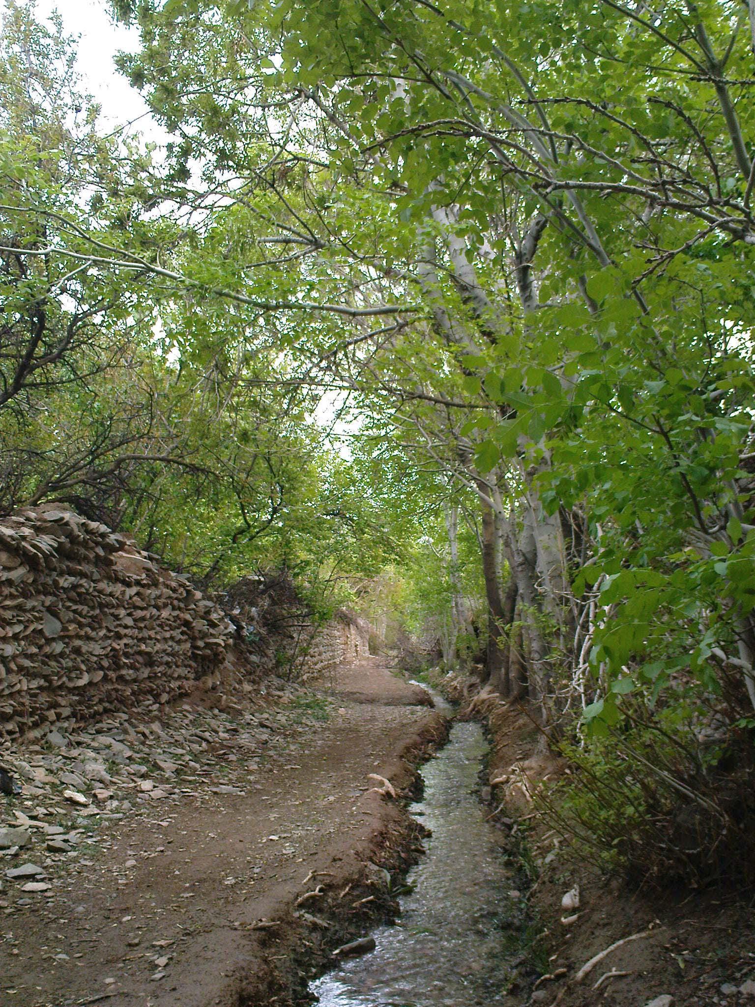 http://zibacardpostal.persiangig.com/image/DSC00002.jpg
